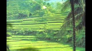 The Balinese traditional Bambu & flute Music. - Stafaband
