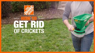How to Get Rid of Crickets | DIY Pest Control | The Home Depot