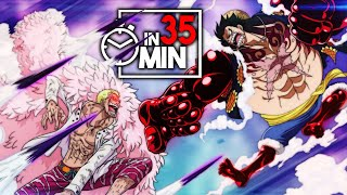 ONE PIECE 'DRESSROSA' ARC IN 35 MINUTEN