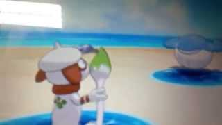 Smeargle using dragon ascent!