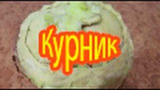 Пирог с курицей и картофелем. Курник. Фото - видео рецепт.