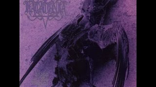 Top 20 death-doom metal bands
