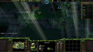 Warcraft 3: A Quick Look at Orc and Elves!