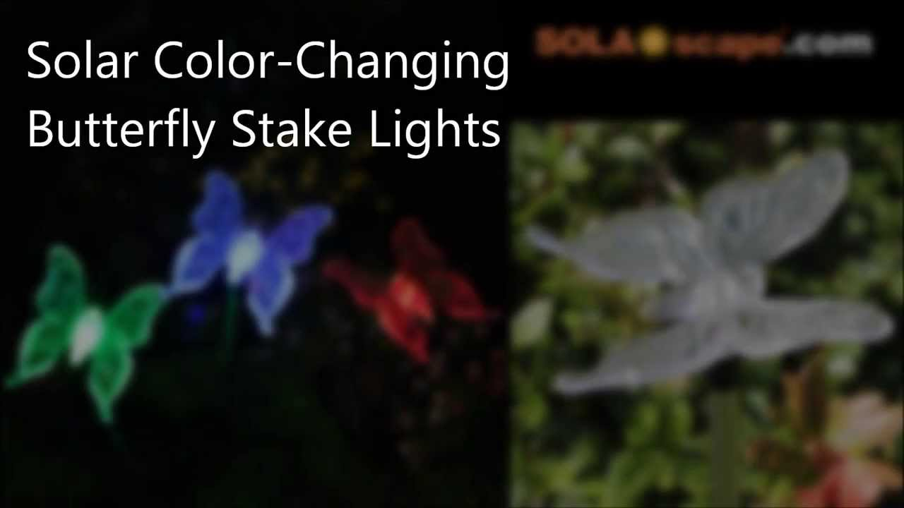 Solar Color Changing Butterfly Garden Stake Lights By SOLAscape.com