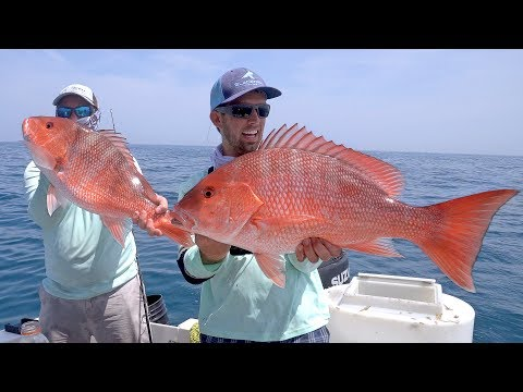 Kingfish, Cobia and Snappers - Offshore Fishing in Florida -