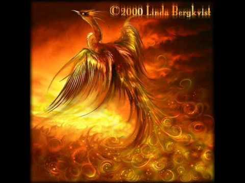 forum phoenix