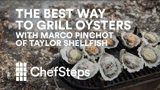 The Best Way to Grill Oysters, With Marco Pinchot of Taylor Shellfish thumbnail