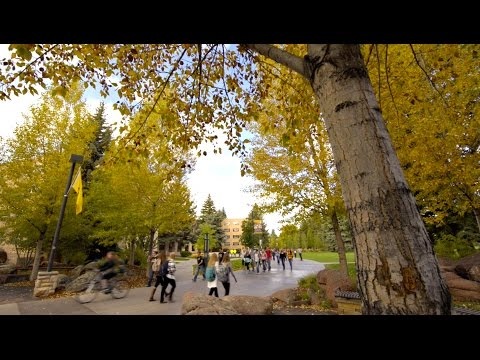 UW Campus Tour || Wyoming Union & Simpson Plaza