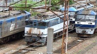 電気機関車いっぱい!JR貨物新鶴見機関区