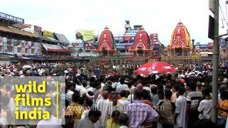 Rath Yatra in Puri brings thousands into the streets to glorify Lord Jagannatha