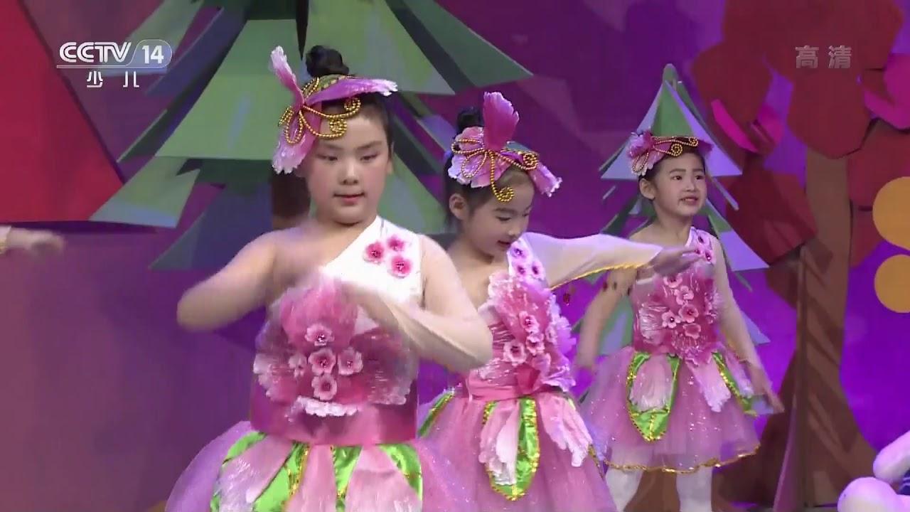 [英雄出少年]《小白杨》 表演:北京柏艺舞蹈培训学校 | CCTV少儿