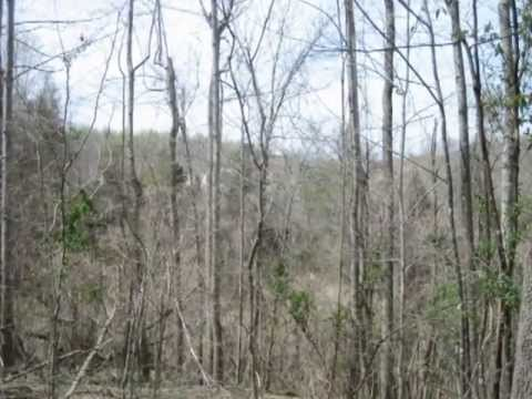 Buy Hunting Land, Rural Land For Sale
