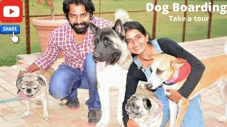 Dog Boarding Delhi || Day care || Pet Home Boarding