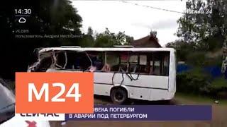 Три человека погибли в аварии под Петербургом - Москва 24
