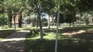 Арендовать апартаменты в Бенидорме(, 2014-10-17T15:52:22.000Z)
