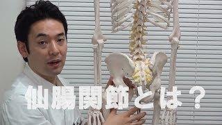 仙腸関節性腰痛の治療 仙腸関節とは? 放散痛 検索動画 27
