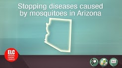 Stopping diseases caused by mosquitoes in Arizona