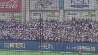 Japanese baseball fans are incredible.