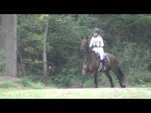 Barbara Flynn riding P.K. Cooper; AFHT, September 2015
