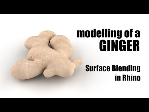 Design Computing Tutorials - Modelling a Ginger, Surface Blending in Rhino