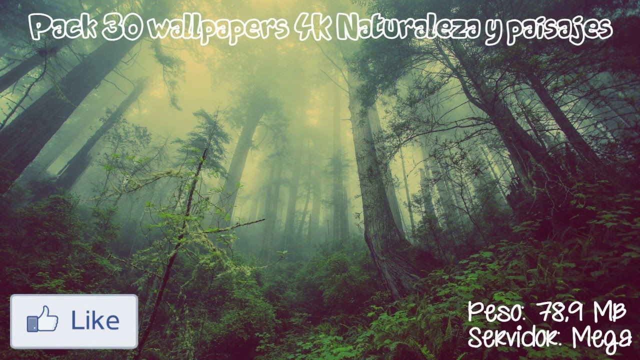 30 wallpapers 4k naturaleza packs wallpapers 4k youtube - Windows 10 4k wallpaper pack ...