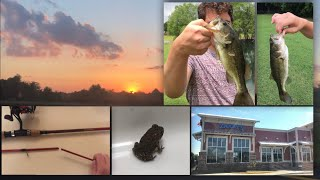 Memphis Adventure (Fishing, Zaxby's, and Sunset)