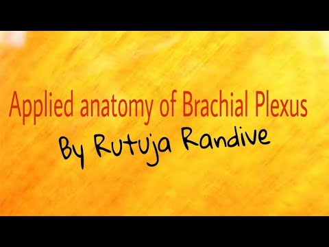 Applied anatomy of Brachial Plexus | Brachial Plexus Anatomy - YouTube