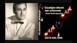 Gezdiğim dikenli aşk yollarında -Alaeddin Şensoy