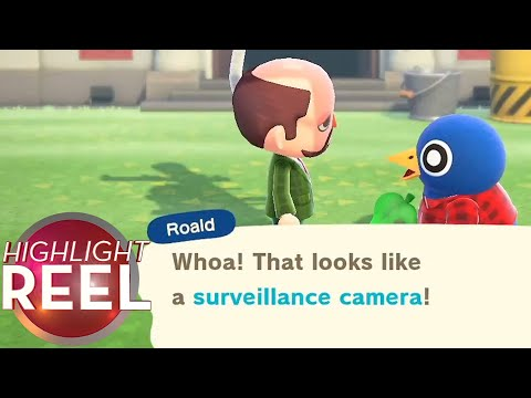 highlight-reel-#543---how-to-spy-on-your-animal-crossing-town