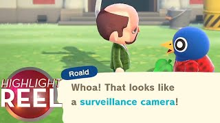 Highlight Reel #543 - How To <b>Spy</b> On Your Animal Crossing Town ...