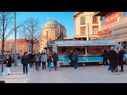 Gothenburg, Sweden: Street Life, Cherry Blossom And People Of Linnégatan  (1 Km Walk, Natural Sound)