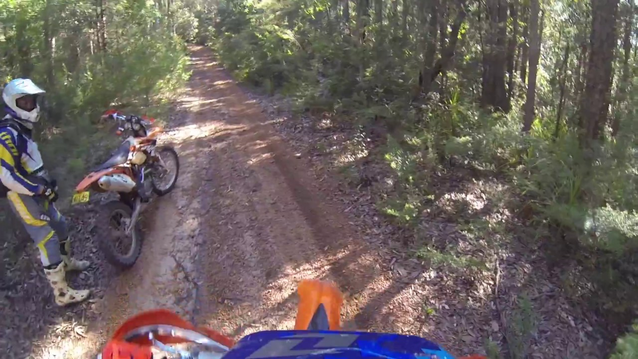 Ourimbah State Forest Ride Long Weekend