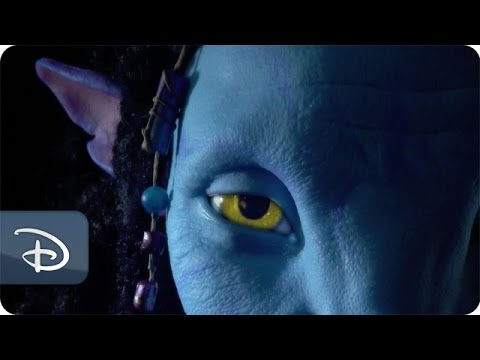 Behind the Scenes of Pandora - The World of Avatar | Disney's Animal Kingdom