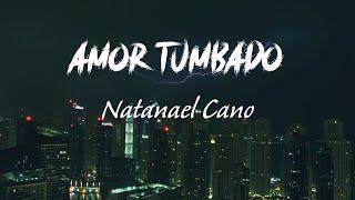 Natanael Cano - Amor Tumbado (Letra)   La Vida Latina