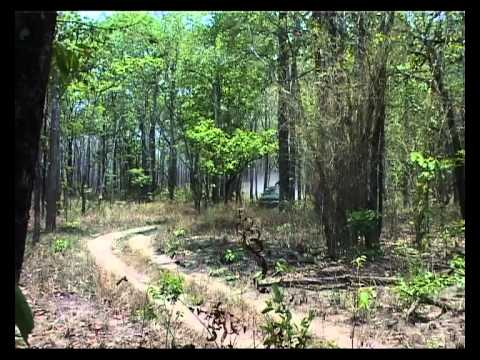 Foresters offers a trusted final expense insurance solution and much more besides. Mondulkiri Protected Forests The Making Of A Protected Area Khmer Youtube