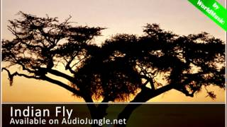 IndianFly - Royalty-free music AudioJungle
