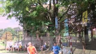 видео Ульяновка (Кировоградская область)