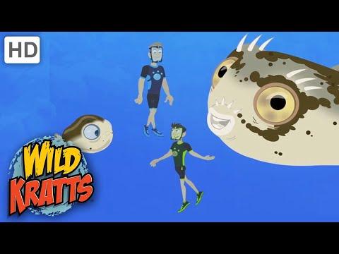 Wild Kratts |Water Creatures  |Diet |Nature