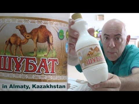 Tasting Horse Milk and Camel Milk in Kazakhstan, with Glenn Campbell