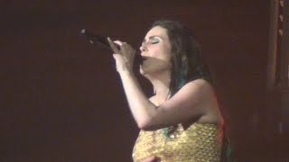 Within Temptation - Covered By Roses - Live le Zénith Paris 2014
