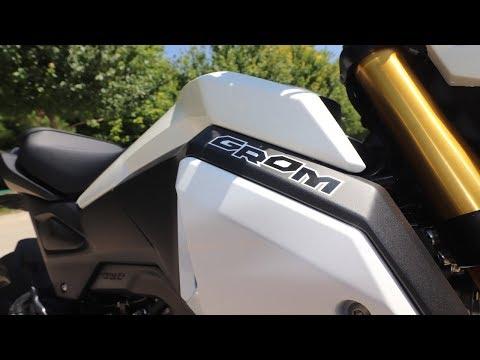My CUSTOM 2019 Honda Grom (Jasper)