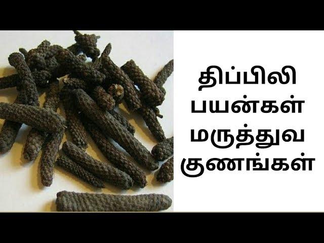 Thipilli திப்பிலி பயன்கள் மருத்துவ குணங்கள்