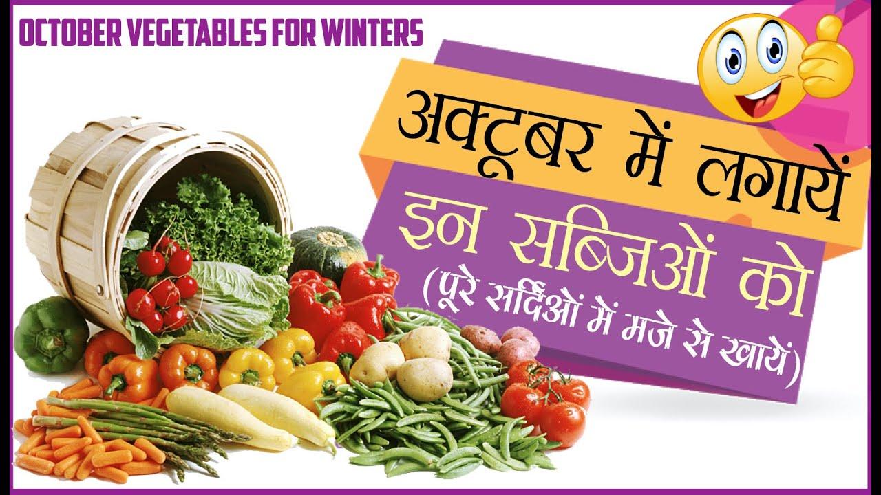 भारत में अक्टूबर के महीने में लगने वाली सब्जियॉं October growing vegetables in India By SansarGreen
