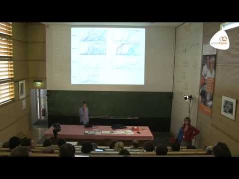 "Michel Desaï: ""Population Genetics and theory of natural variations"""
