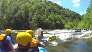 White Water Rafting (Ocoee River)