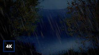 Lluvia de la tarde en un lago   Sonidos de lluvia suave en hojas con pantalla oscurecida para dormir