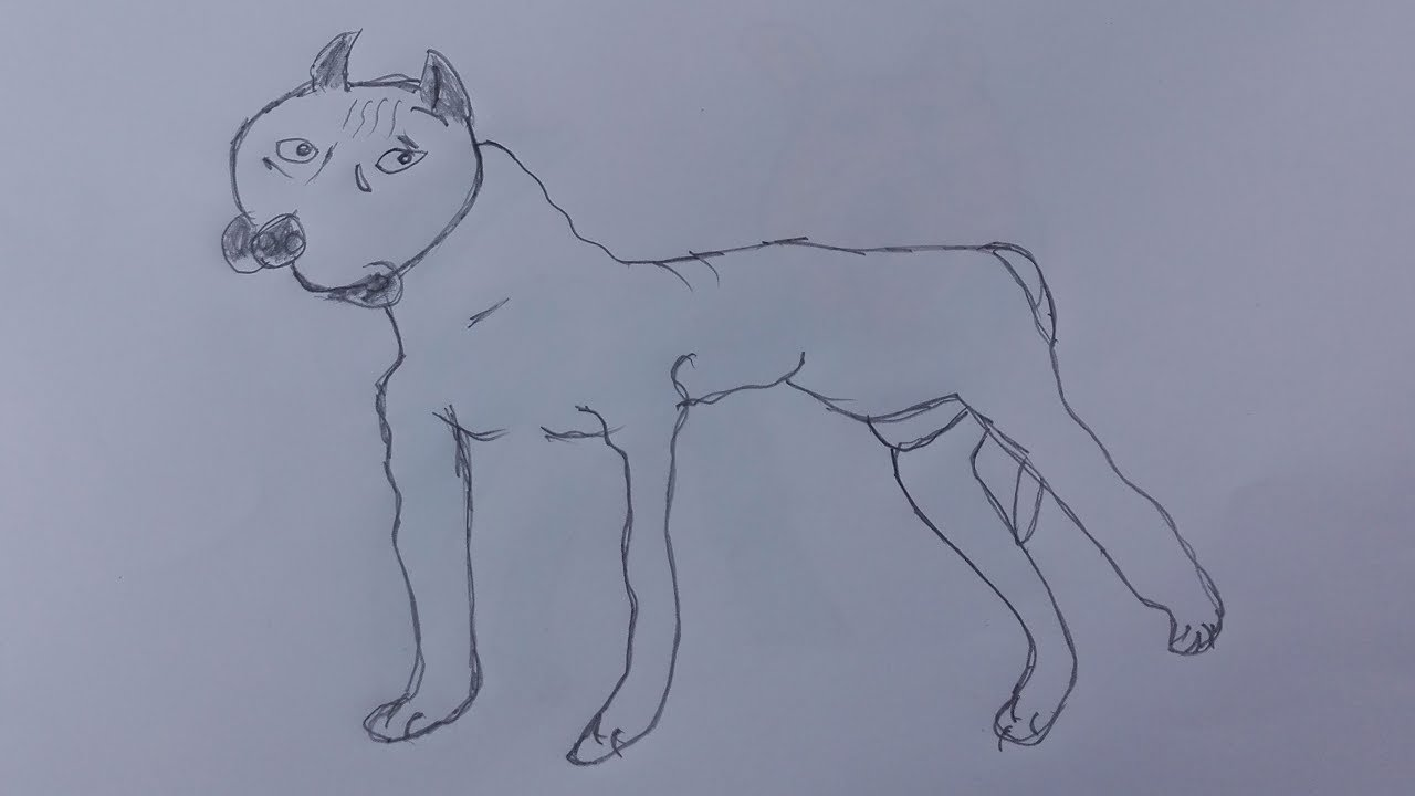 How To Draw A Dog Youtubedraw A Cute Dog Step By Stepdraw A Cute Puppy  Easy