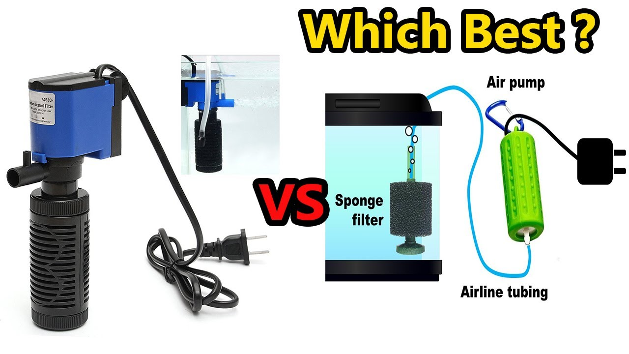 Sponge Filter or Internal Filter which is best?