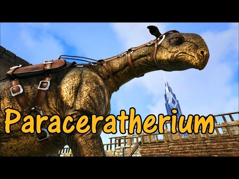 Paraceratherium Educational Special [14]
