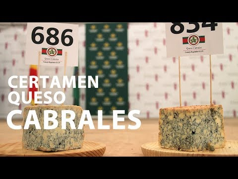 video about Cabrales Cheese Contest